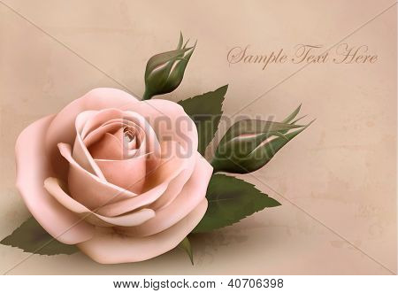 Retro background with beautiful pink rose with buds. Vector illustration.