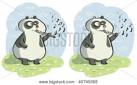 Panda Differences