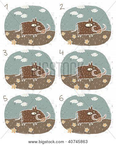 Warthog Puzzle