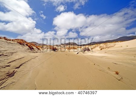 Sand Dunes On A Remote Shore