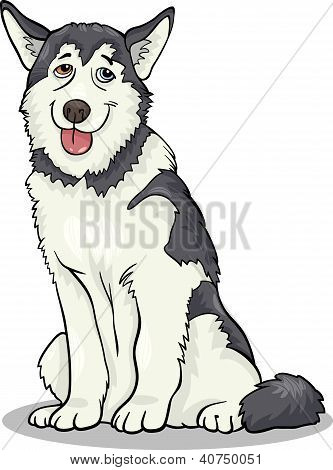 Husky oder Malamute Hund Cartoon Illustration