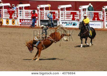 Cowboy On Bucking Bronco