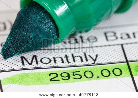 Payslip With Monthly Wage