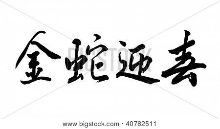 Chinese Calligraphy 2013 Year of the snake design,words means Everything is good luck in snake year