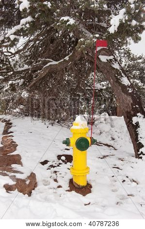 A wilderness area fire hydrant with visual identification flagpole in case snow covers the hydrant.