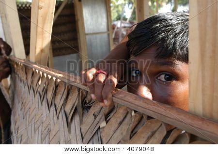 Boy Rebuilding