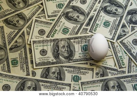 100$ Banknotes And An Egg