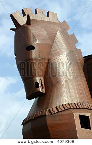 Close-Up Head Of The Trojan Horse