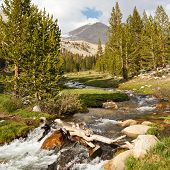 Whitney Creek, Sierra Nevada