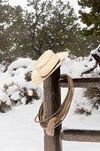 stock photo of wrangler  - A cowboy - JPG