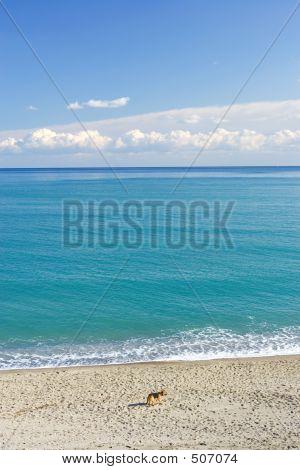 Wild Landscape Of The Mediterranean Sea In Spain