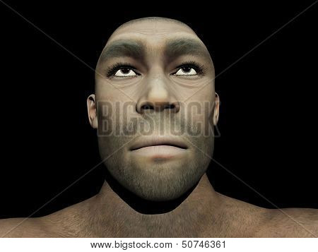Homo erectus male - 3D render
