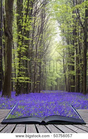 Creative Concept Pages Of Book Vibrant Bluebell Carpet Spring Forest Landscape