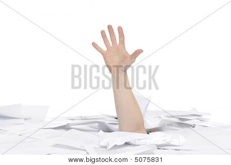 Drowning In Papers