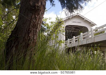 Grave Creek Covered Bridge Sunny Valley Vintage Road Transportation