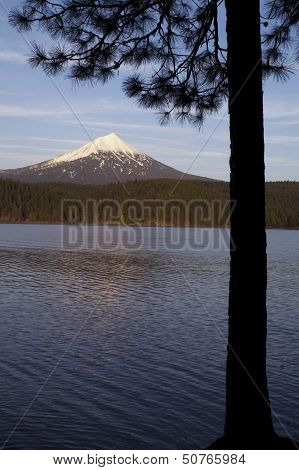 Mt Mcgloughlin Willow Lake Pine Tree Oregon Rural Country