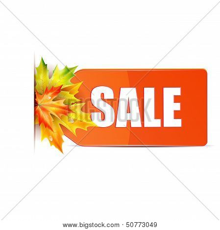 Autumn Seasonal Sale.red Price Tag With The Word Sale Decorated With Autumn Maple Leaves.red Label W