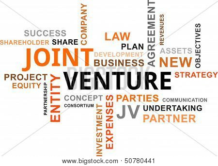 Word Cloud - Joint Venture