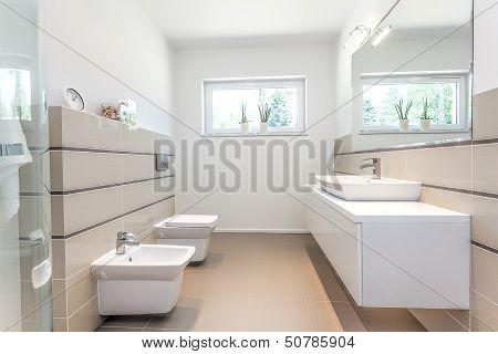 Bright Space - White Bathroom