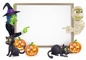 pic of mummy  - Halloween sign or banner with orange Halloween pumpkins and black witch - JPG