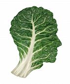 stock photo of leafy  - Human healthy diet concept with a dark green leafy kale or collard leaf in the shape of a head as a symbol of fresh vegetable eating and intelligent dieting using farm fresh natural organic produce from the local market - JPG