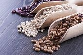 foto of pinto bean  - Close up photo of a beans in wooden scoop  - JPG