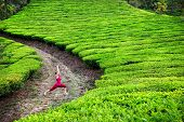 stock photo of virabhadrasana  - Yoga virabhadrasana I warrior pose by woman in red cloth on tea plantations in Munnar hills Kerala India - JPG