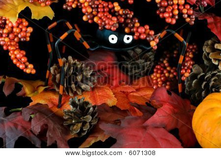 Whimsical Halloween Spider In Leaves And Berries