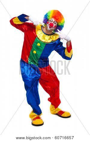 Funny clown full length