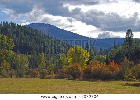 Colores de la montaña de otoño