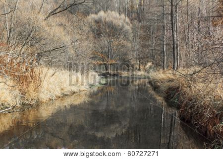 Oil Painting Stylized Photo Of Generic Autumn Landscape With River