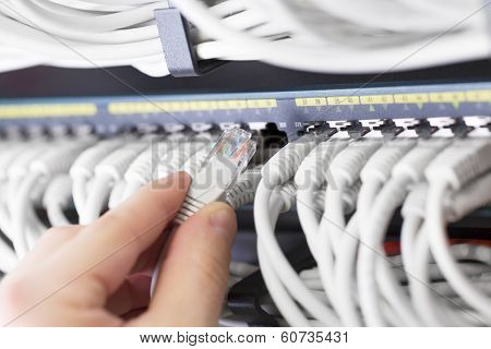 It consultant connect network cable