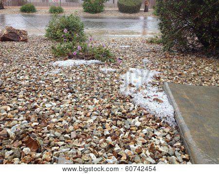 Unexpected Spring Snow in Desert