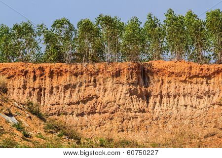Soil Under Condition Of The Erosion.