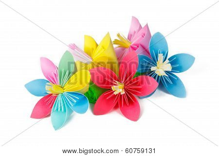 four colored paper flowers and flower with varicolored petals