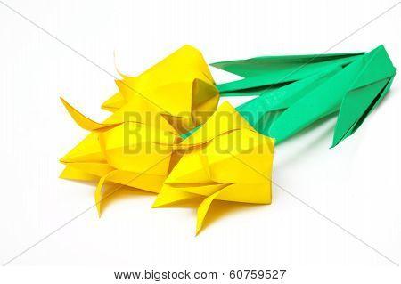 Three Yellow Paper Tulips