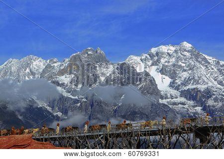 Caravan Across Jade Dragon Snow Mountain