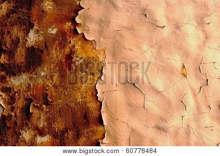 Old Plaster on a Wall
