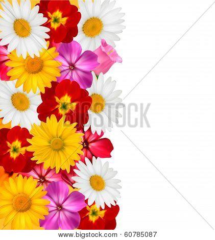Flower Border. Vector.