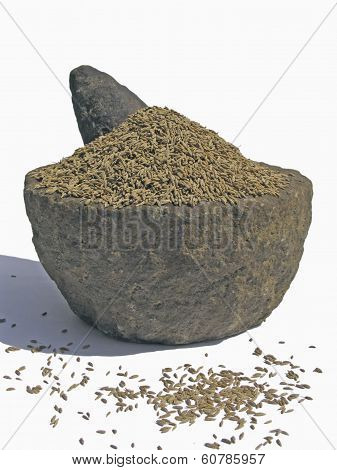 Cumin, The Fruits Of Cuminium Cyminum