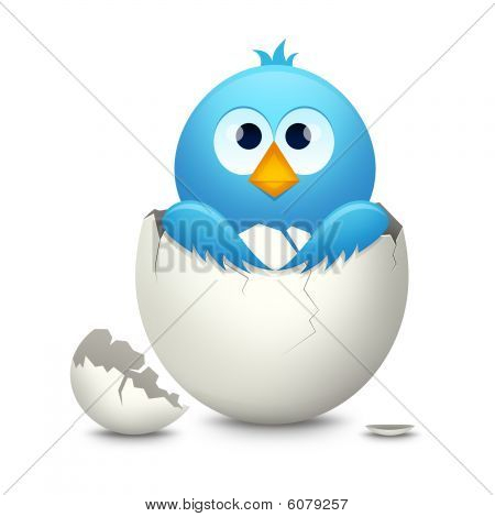 Blue bird in egg