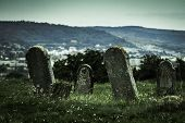 picture of tombstone  - Old tombstones on the county hill behind a city - JPG