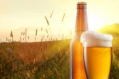 stock photo of pitcher  - Glass of beer and bottle against wheat field and sunset - JPG