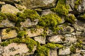 image of stonewalled  - Dry masonry stonewall with moss closeup as background - JPG