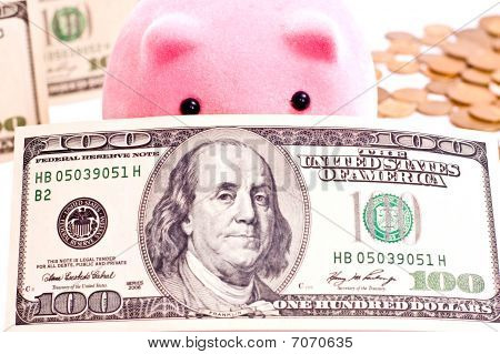 Pig And 100 Dollars