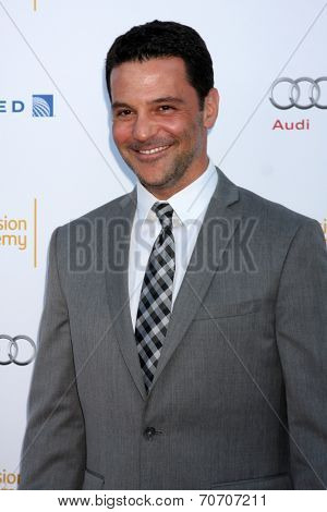 LOS ANGELES - AUG 23:  David Alan Basche at the Television Academy's Perfomers Nominee Reception at Pacific Design Center on August 23, 2014 in West Hollywood, CA