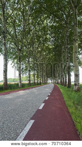 Curved Road Groningen