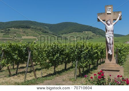Cross And Vineyard