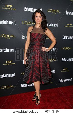 LOS ANGELES - AUG 23:  Bellamy Young at the 2014 Entertainment Weekly Pre-Emmy Party at Fig & Olive on August 23, 2014 in West Hollywood, CA