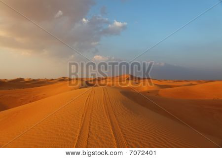 Vehicle Tracks On A Dune